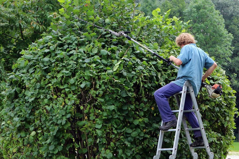 Tuin Laten Doen : Tuin zelf opknappen of het laten doen bouw baas
